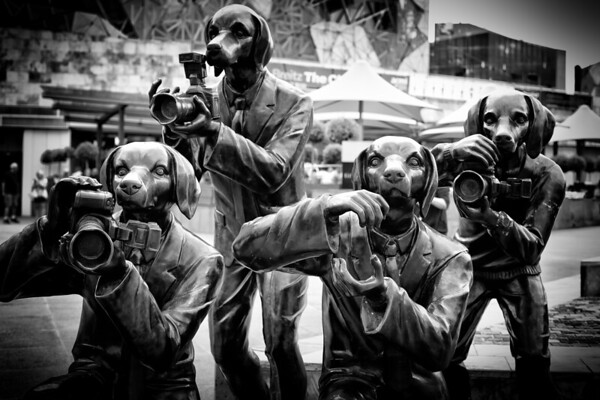 Paparrazi Dogs in Fedreation Square. Just love this!