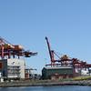Loading docks in the harbor.