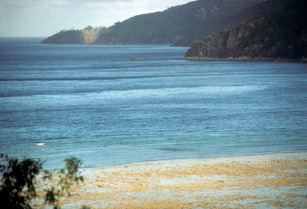 Australia-Brisbane-Hayman_Island-333