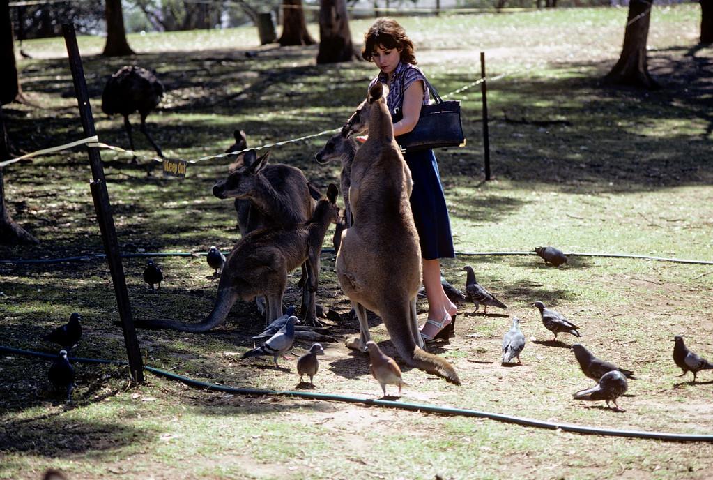 Australia-Brisbane-Hayman_Island-039