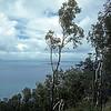 Australia-Brisbane-Hayman_Island-324