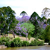 005 Brisbane River, Brisbane