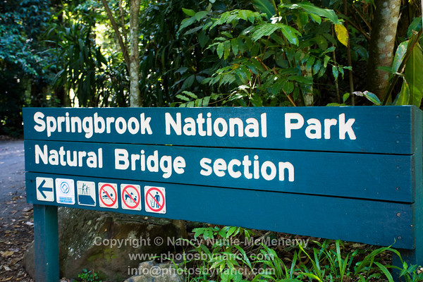 Springbrook and Mt. Tamborine