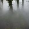 Fog is settling