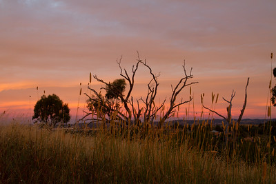 Sunset glow over Canberra