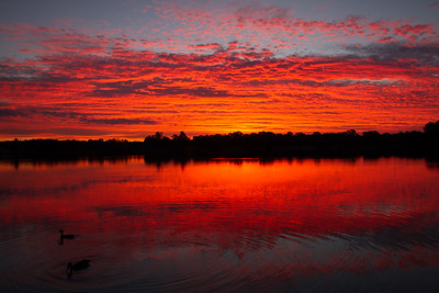 Vibrant sunset (unedited)