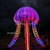 Octopus, Enlighten Festival, Canberra