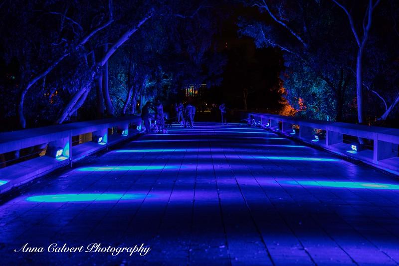 Enlighten Festival, Canberra
