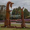 Kangaroos at Floriade, Canberra