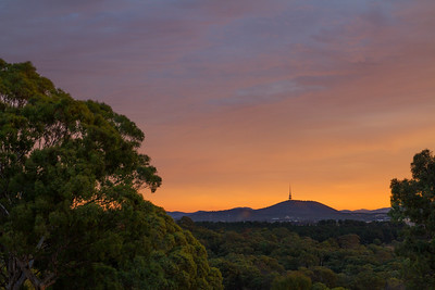 Telstra tower at sunet