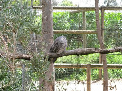 Serendip Park 27-12-2011