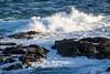 The Nobbies, Phillip Island, Australia