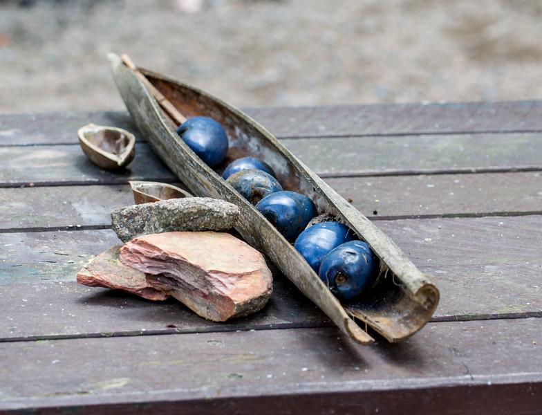 Aboriginal Fruit, Queensland, Australia