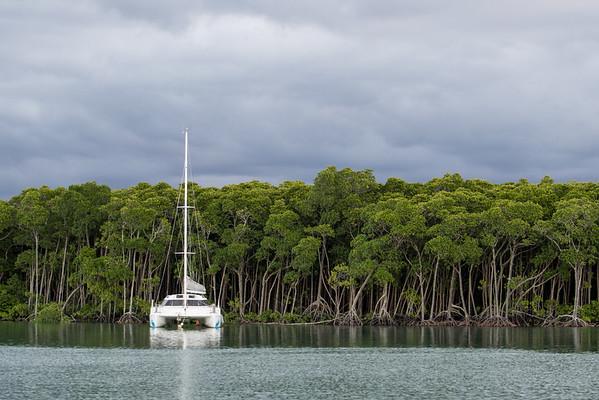 River in Port Douglas, Australia.