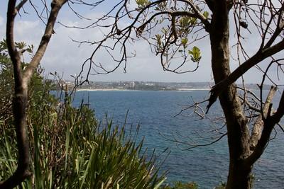 Sydney 2014 24