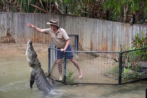 Cairns, Hartley's Wildlife Park