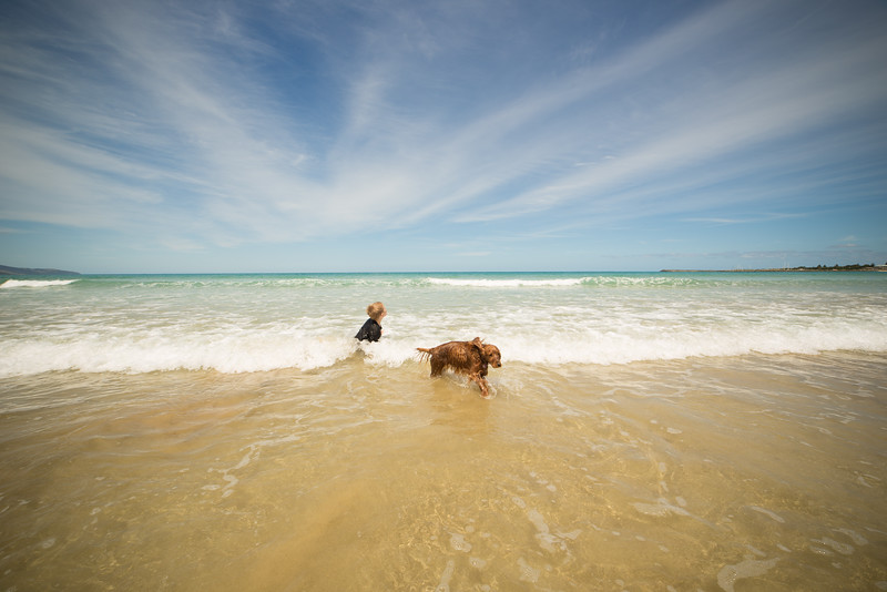 Apollo Bay Beach-77.jpg