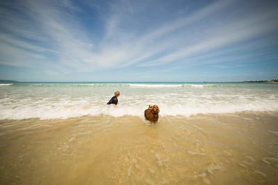 Apollo Bay Beach-78.jpg