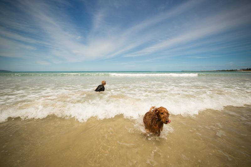 Apollo Bay Beach-80.jpg