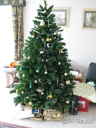 Sherwood Christmas 25th Dec 2010