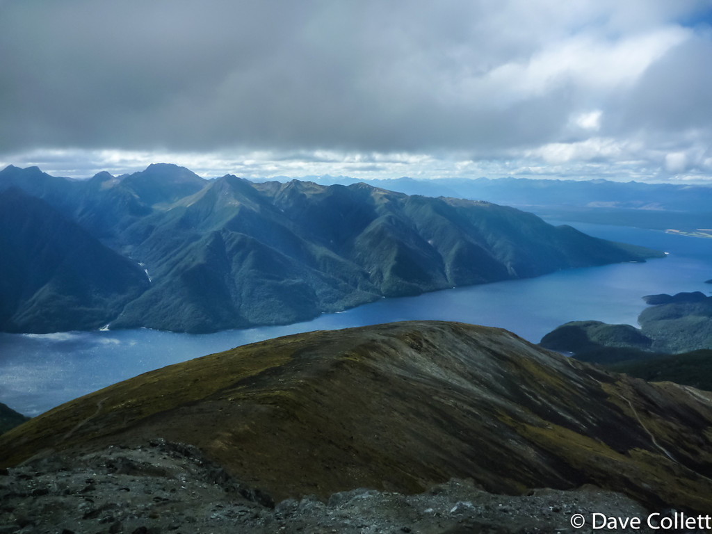 South Fiord from Mt Luxmore