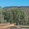 Flinders Ranges NP is a great place to visit.
