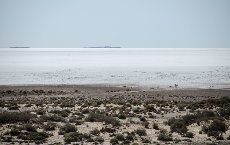 Lake Eyre used to be full of water; it still is occasionally.  But mostly it's a salt flat, worth taking a short side trip to see.