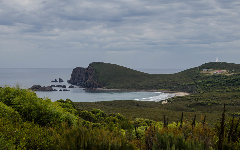 Bruny Island is lovely, and we wandered the day away.