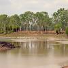 Au 2363  Keep River NP, Cockatoo Lagoon met Australian Pelic