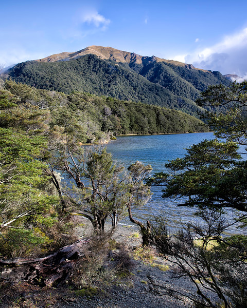 The countryside is varied as seen at Lake Mavora not far from Te Anau