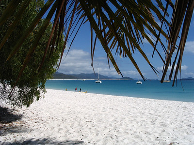 Whithaven beach, rated the 2nd most beautiful beach in the world by National Geographic.