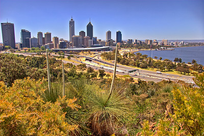 Perth from the Park