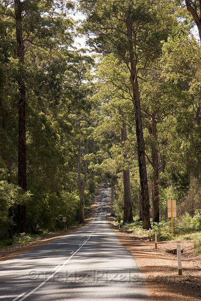 Road to Manjimup