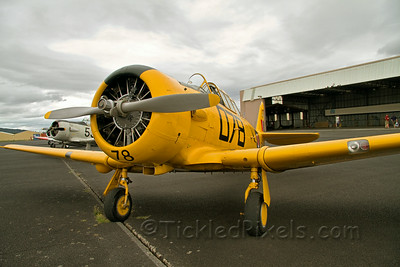 North American AT-6D Harvard III NZ1078
