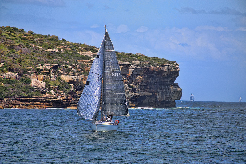Sailboat in Sydney Harbor