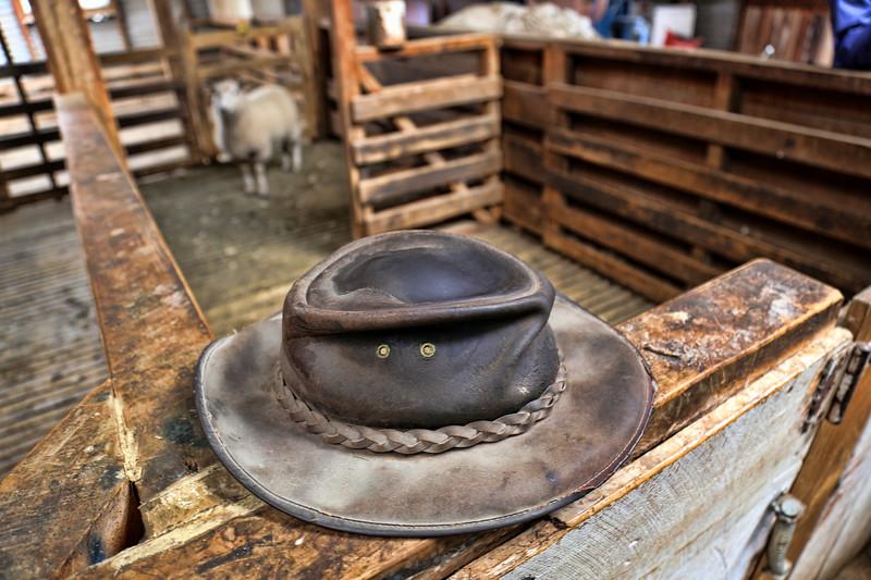 Sheep Shearer's Hat, Morelea Sheep Farm, NZ