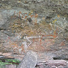 Much of the rock art in the Angbangbang rock shelter gallery was repainted by an aboriginal rock artist in the early 1960s. The original art paintings were very faded. <br /> Kakadu National Park