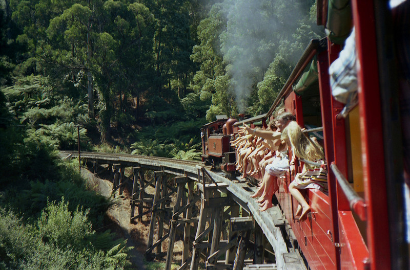 Puffing Billy steam train in the Dandenong Ranges near Melbourne.