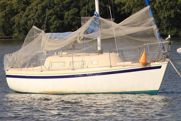 Moskitera na łódce