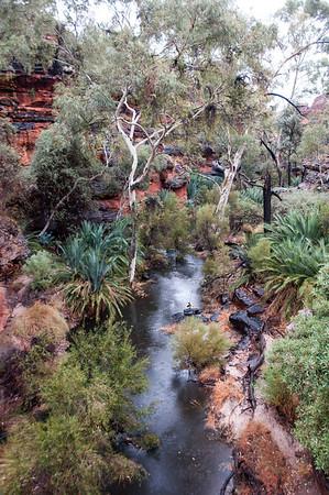 Australia 2013 - King's Canyon