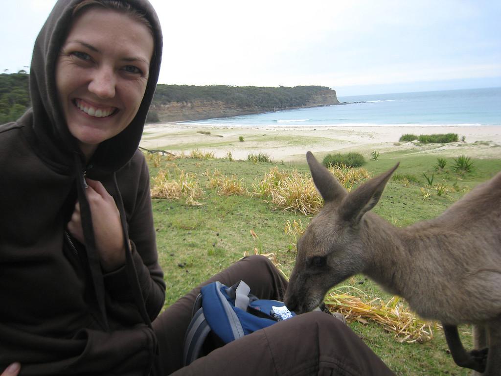 kangaroo lunch
