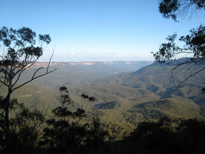 Blue Mountains 037