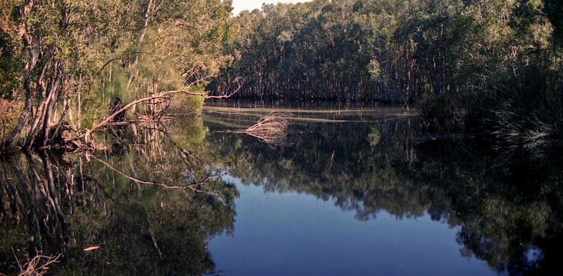 Deepwater Creek.