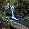 Cedar Creek Falls Tamborine National Park, Qld