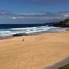 Beach at Newcastle, NSW