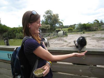 The Emu!!