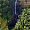 Fitzroy Falls in Morton National Park, south of Sydney.