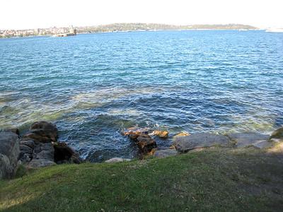 Beautiful Sydney Harbor