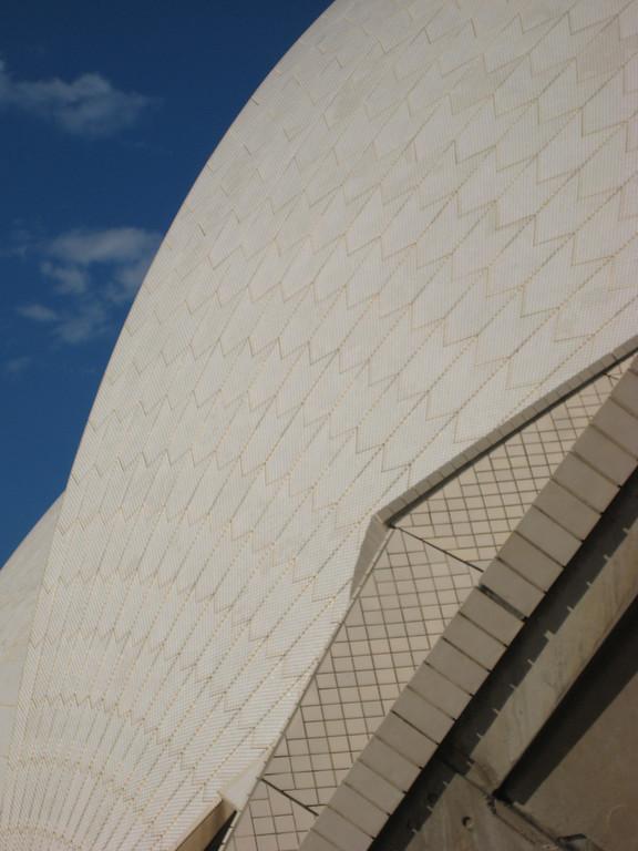 beautiful curves on the opera house