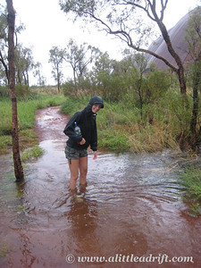 Uluru Base Walk in the Rain